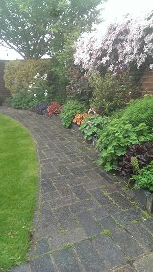soft-landscaping3